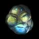 Glassblower's Bauble *100