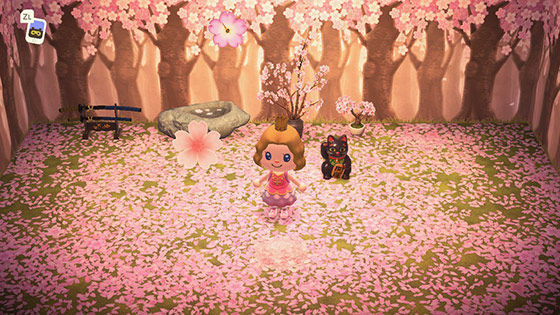 Cherry-Blossoms Theme