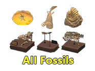 All Fossils
