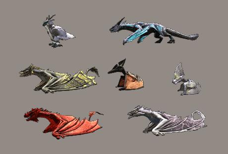 PVP Dragon 4