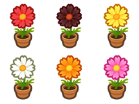 All Cosmos Plant