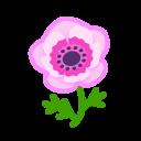 pink windflowers(10)