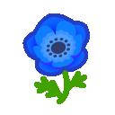 blue windflowers(10)