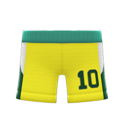 basketball shorts
