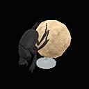 dung beetle model
