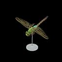 darner dragonfly model