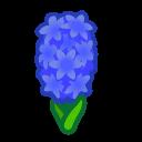 blue hyacinths(10)