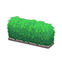 hedge(50)
