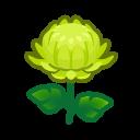 green mums(10)