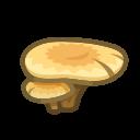 flat mushroom(10)