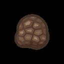 rare mushroom(10)
