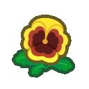 yellow pansies(10)