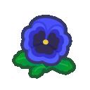 blue pansies(10)