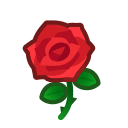 red roses(10)