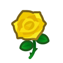 yellow roses(10)