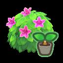 pink-azalea start(10)