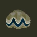 giant clam(10)