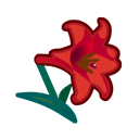 red lilies(10)