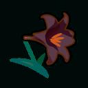 black lilies(10)